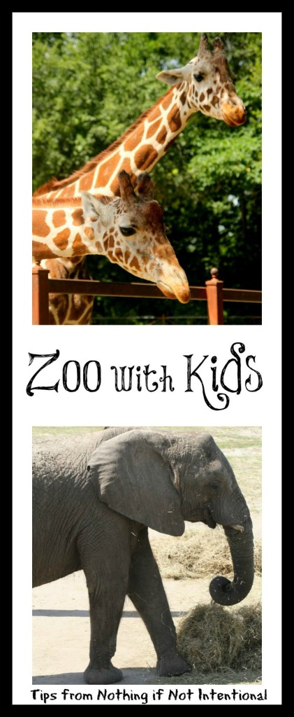 Before going to the zoo with kids, read this! Helpful hints, creative play ideas, books to read, and DIY souvenir ideas.