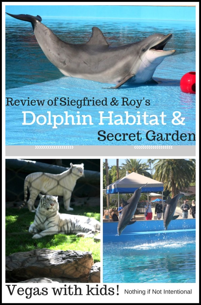 Vegas with Kids--Secret Garden and Dolphin Habitat