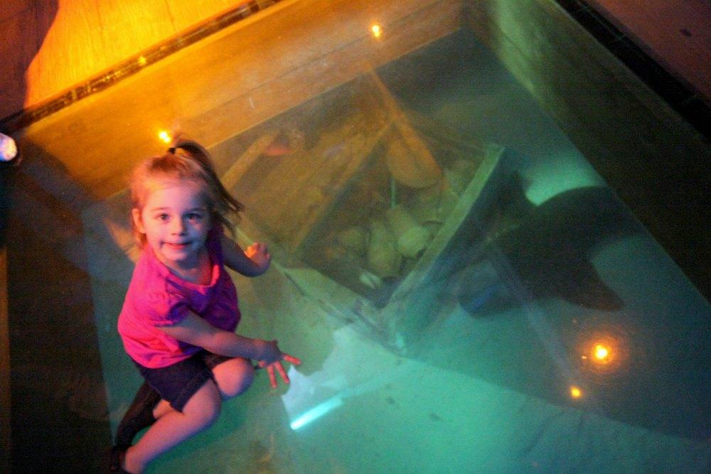 Las Vegas Shark Reef Aquarium