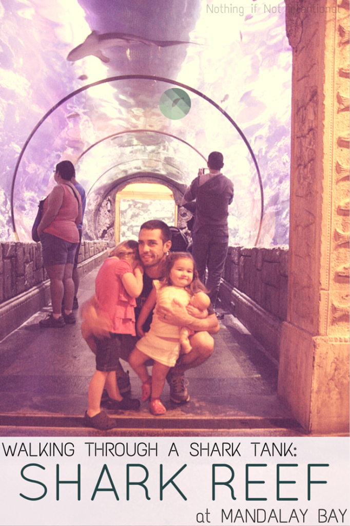 Things to do in Vegas with kids--one family's review of Shark Reef Aquarium at Mandalay Bay