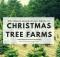 Wabash Valley Christmas Tree Farms near Terre Haute, Indiana