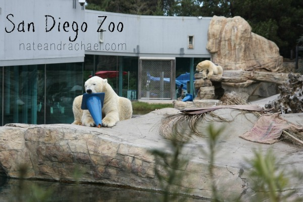 Zoo with kids! Tips to consider, books to read, ways to play, and souvenirs to make.