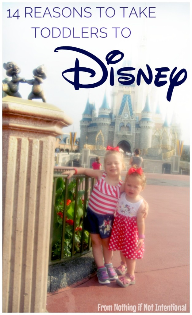 "14 Reasons to Take Babies and Toddlers to Disney. You don't have to wait until their ""old enough""!"