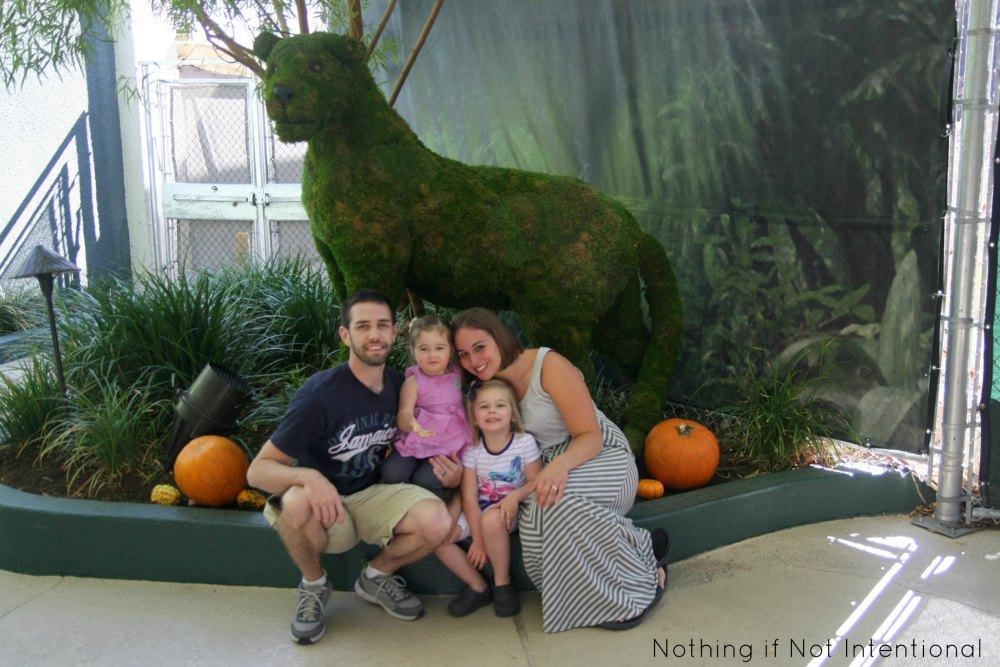 Things to do in Las Vegas with Kids!