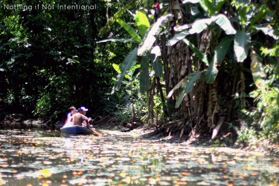 Things to do in Costa Rica with kids --Canoe through the jungle